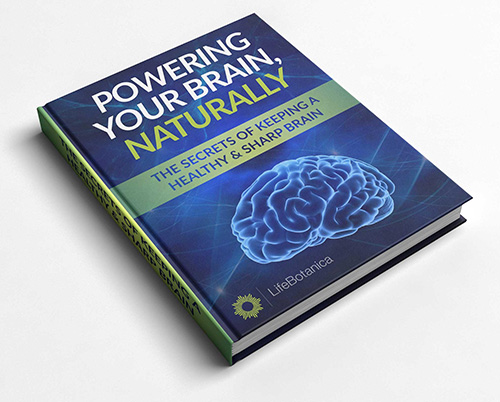 Free Downloadable POWERING YOUR BRAIN NATURALLY eBook
