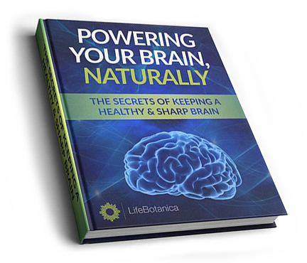 POWERING YOUR BRAIN NATURALLY