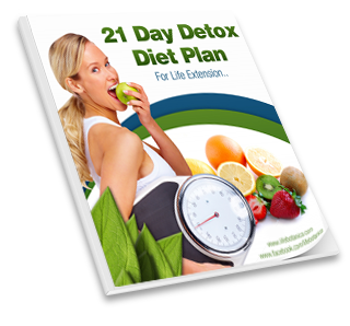 21 Day Detox Diet Plan downloadable eBook